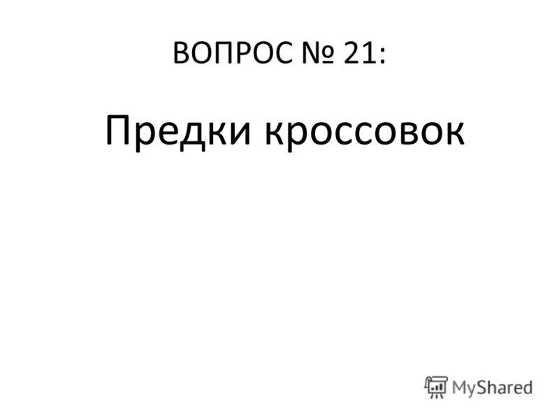 ВОПРОС 21: Предки кроссовок