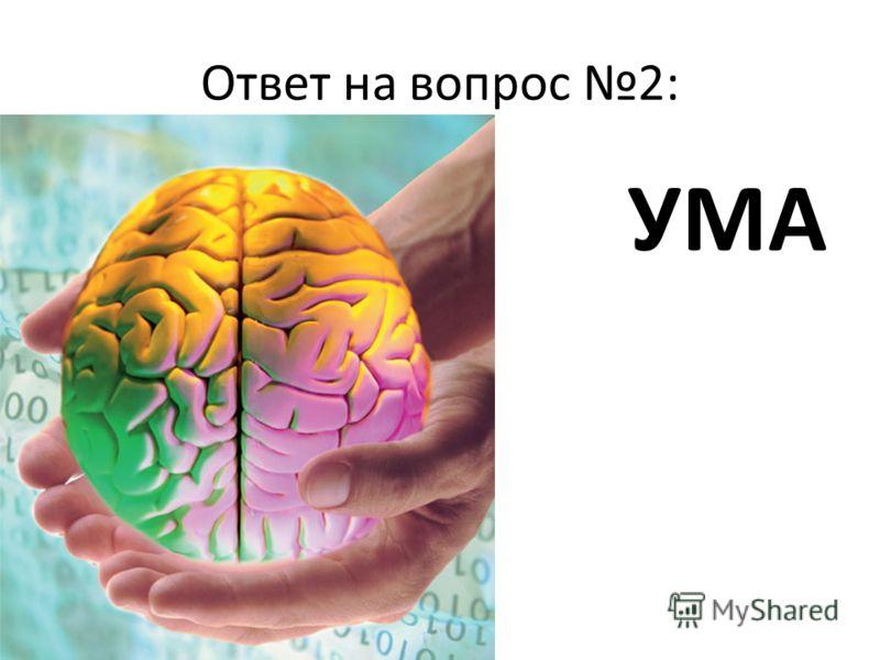 Ответ на вопрос 2: УМА