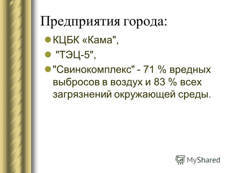 Предприятия города: КЦБК «Кама, ТЭЦ-5, Свинокомплекс - 71 % вредных выбросов в воздух и 83 % всех загрязнений окружающей среды.