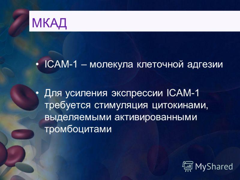 ICAM-1 – молекула клеточной адгезии Для усиления экспрессии ICAM-1 требуется стимуляция цитокинами, выделяемыми активированными тромбоцитами МКАД