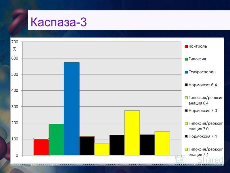 Каспаза-3