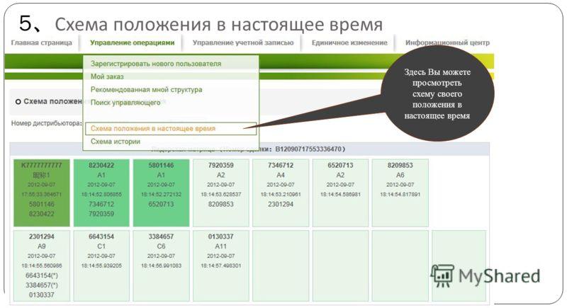 5 Схема положения в настоящее время Здесь Вы можете просмотреть схему своего положения в настоящее время