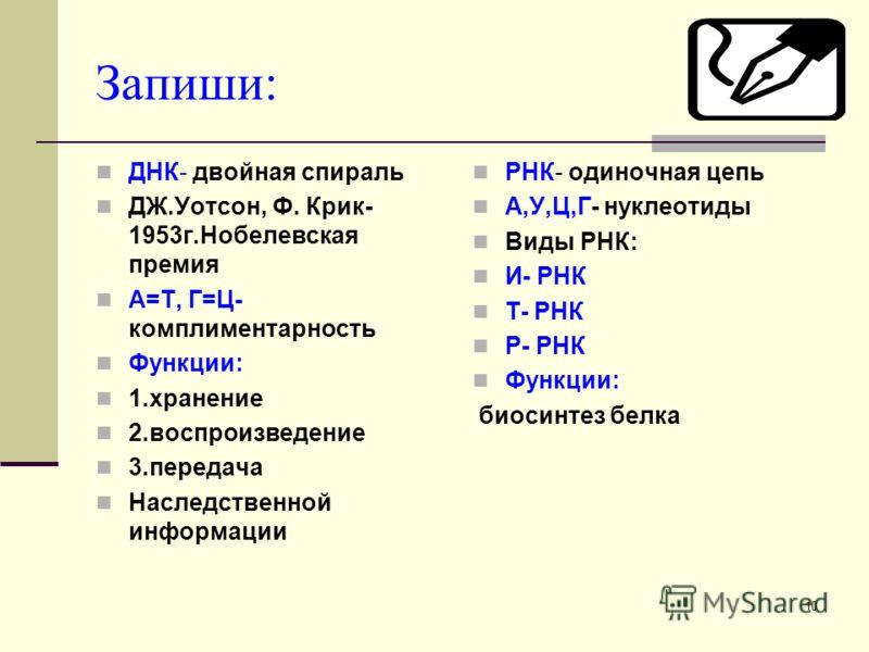9 Сравнительная характеристика НК ПризнакиРНКДНК 5.Свойства Не способна к самоудвоению. Лабильна Способна к самоудвоению по принципу компли- ментарности:А-Т; Т-А; Г-Ц;Ц-Г. Стабильна. 6.Функции и-РНК (или м- РНК)определяет порядок расположения АК в бе