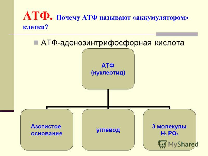 12 Решение: I цепь ДНК Г-Г-Г-А-Т-А-А-Ц-А-Г-А-Т Ц-Ц-Ц-Т-А-Т-Т-Г-Т-Ц-Т-А (по принципу комплементарности) и-РНК Г-Г-Г-А-У-А-А-Ц-А-Г-Ц-У-