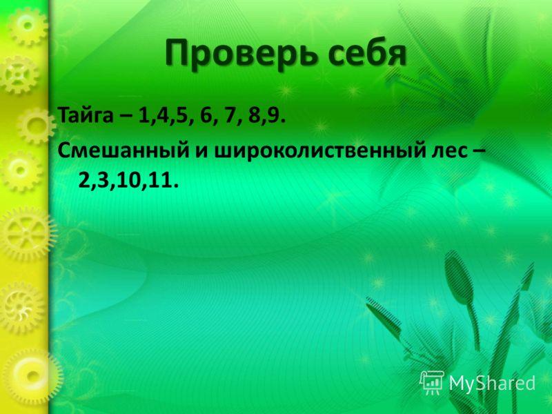 Проверь себя Тайга – 1,4,5, 6, 7, 8,9. Смешанный и широколиственный лес – 2,3,10,11.