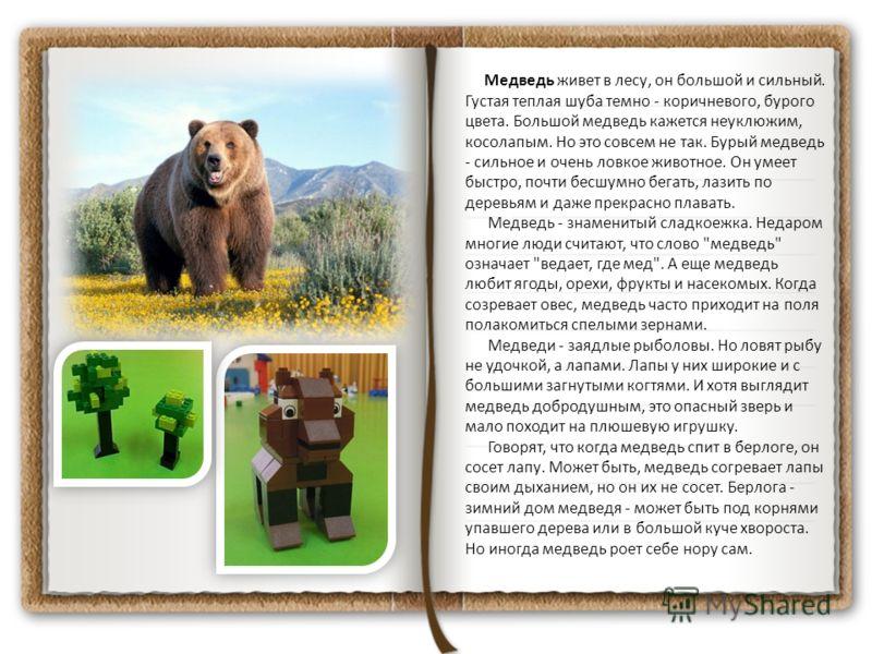Медведь живет в лесу, он большой и сильный. Густая теплая шуба темно - коричневого, бурого цвета. Большой медведь кажется неуклюжим, косолапым. Но это совсем не так. Бурый медведь - сильное и очень ловкое животное. Он умеет быстро, почти бесшумно бег