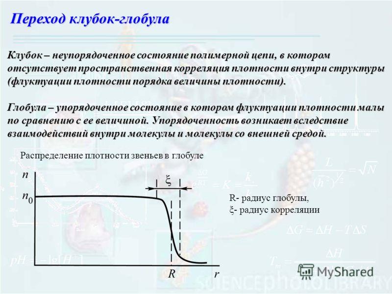 Переход клубок-глобула Клубок – неупорядоченное состояние полимерной цепи, в котором отсутствует пространственная корреляция плотности внутри структуры (флуктуации плотности порядка величины плотности). Глобула – упорядоченное состояние в котором флу