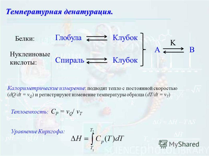 Температурная денатурация. ГлобулаКлубок АB K СпиральКлубок Белки: Нуклеиновые кислоты: Калориметрические измерение : подводят тепло с постоянной скоростью (dQ/dt = v Q ) и регистрируют изменение температуры образца (dT/dt = v T ) Теплоемкость: С P =