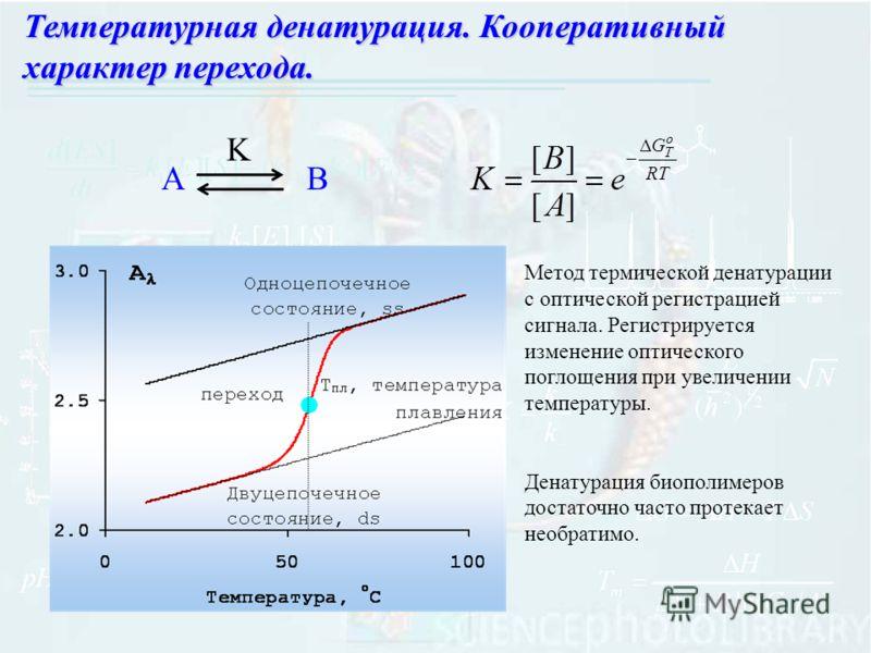 Температурная денатурация. Кооперативный характер перехода. АB K Метод термической денатурации с оптической регистрацией сигнала. Регистрируется изменение оптического поглощения при увеличении температуры. Денатурация биополимеров достаточно часто пр