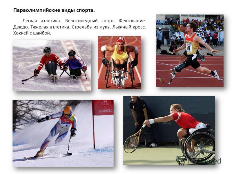 Легкая атлетика. Велосипедный спорт. Фехтование. Дзюдо. Тяжелая атлетика. Стрельба из лука. Лыжный кросс. Хоккей с шайбой. Параолимпийские виды спорта.