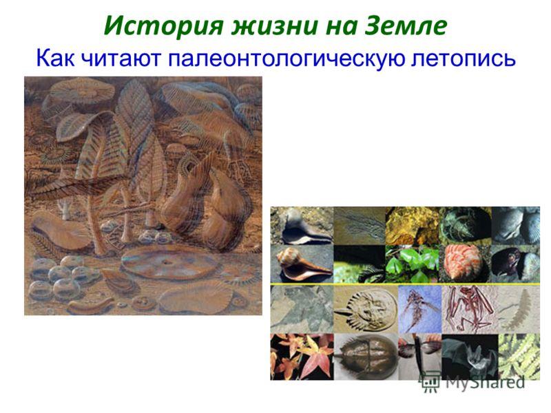 История жизни на Земле Как читают палеонтологическую летопись