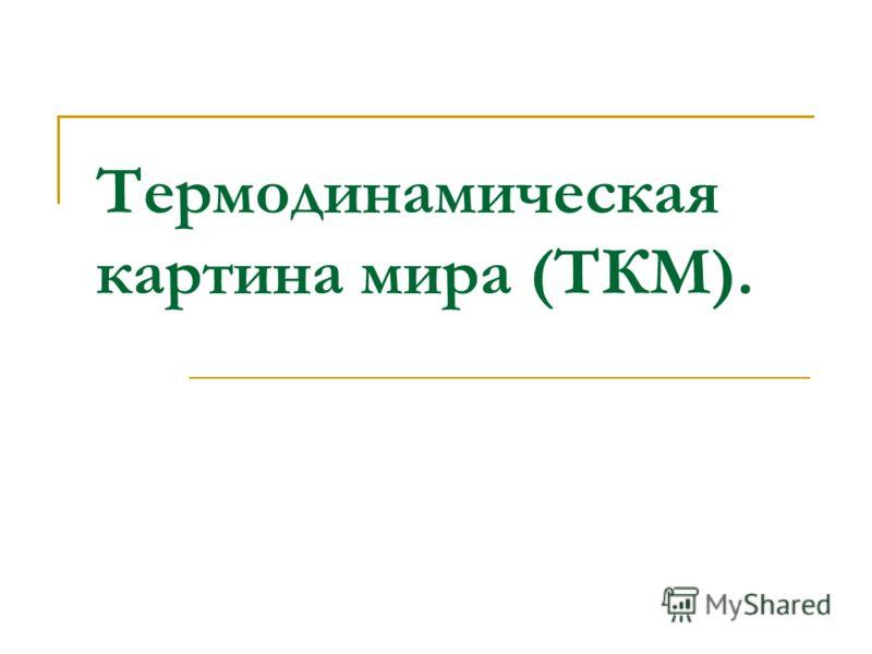Термодинамическая картина мира (ТКМ).
