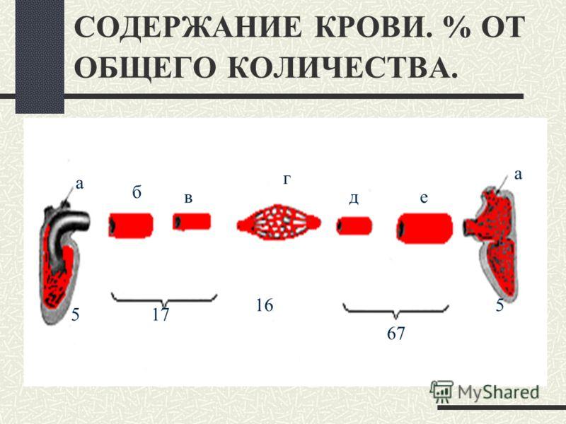УСЛОВИЯ НЕОБХОДИМЫЕ ДЛЯ НЕПРЕРЫВНОГО КРОВОТОКА Соответствие ёмкости полостей сердца и сосудов объёму крови Правый и левый отделы сердца должны работать сопряженно