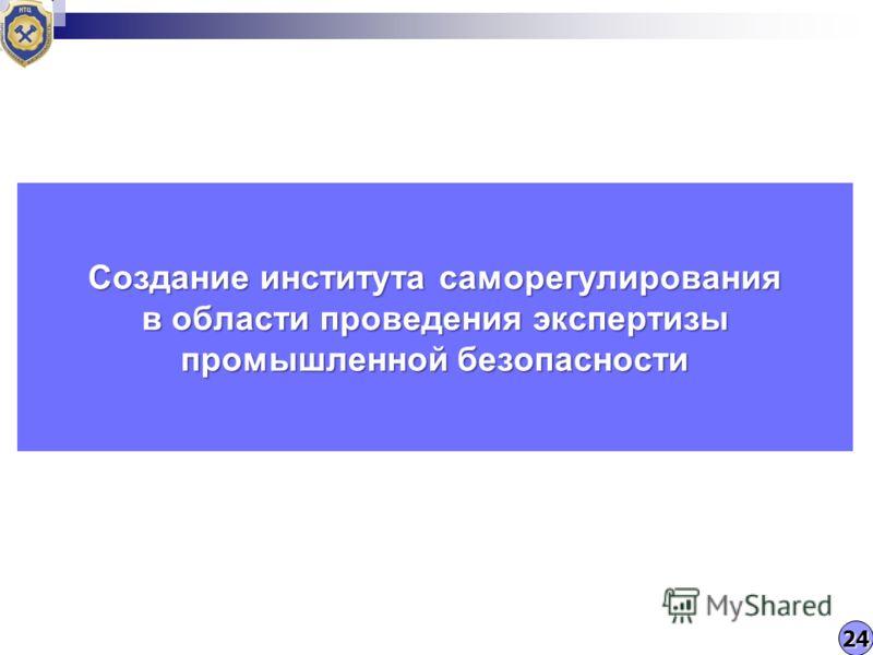 Создание института саморегулирования в области проведения экспертизы промышленной безопасности 24
