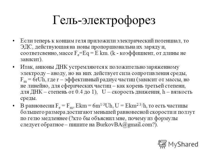 Гель-электрофорез Если теперь к концам геля приложили электрический потенциал, то ЭДС, действующая на ионы пропорциональна их заряду и, соответсвенно, массе F e =Eq = E km. (k - коэффициент, от длины не зависит). Итак, анионы ДНК устремляются к полож