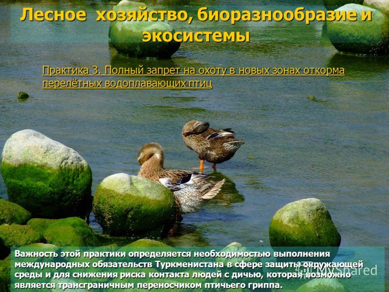Практика 3. Полный запрет на охоту в новых зонах откорма перелётных водоплавающих птиц Лесное хозяйство, биоразнообразие и экосистемы Важность этой практики определяется необходимостью выполнения международных обязательств Туркменистана в сфере защит