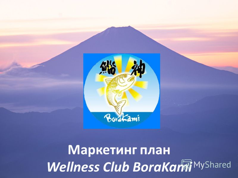 Маркетинг план Wellness Club BoraKami