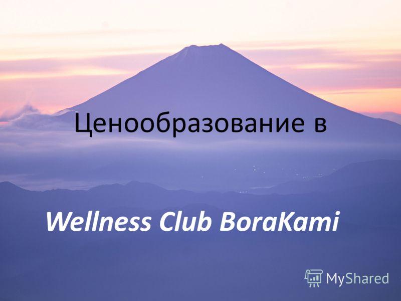 Ценообразование в Wellness Club BoraKami