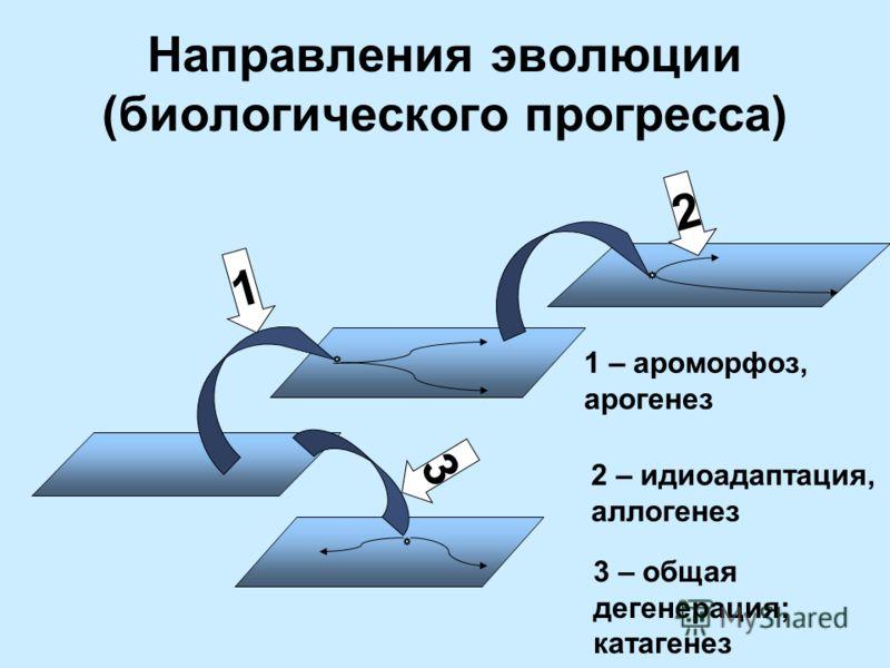 Направления эволюции (биологического прогресса) 1 3 2 1 – ароморфоз, арогенез 2 – идиоадаптация, аллогенез 3 – общая дегенерация; катагенез
