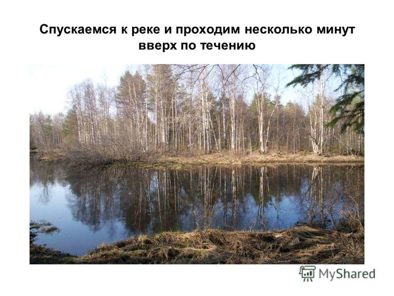 Спускаемся к реке и проходим несколько минут вверх по течению