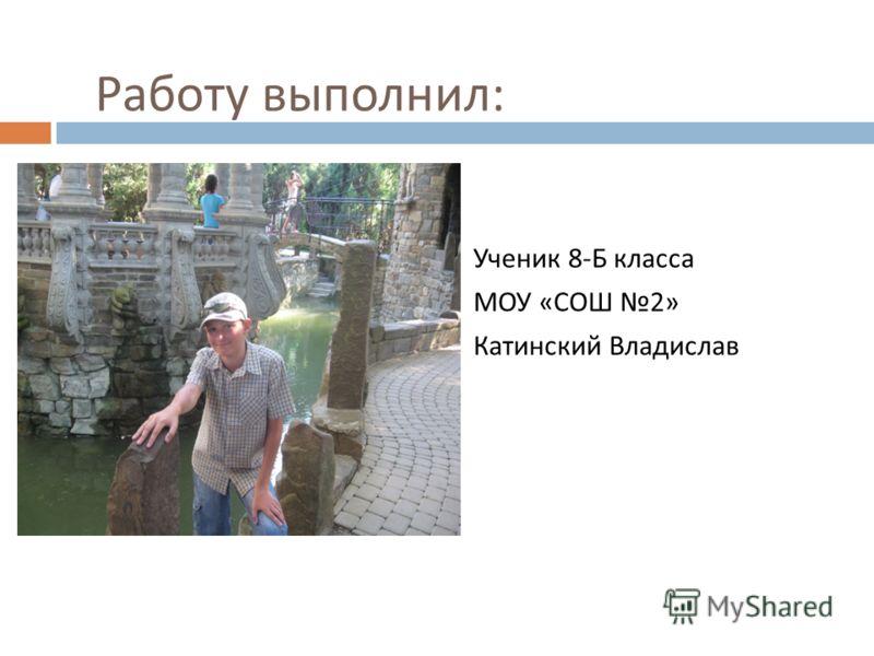 Работу выполнил : Ученик 8- Б класса МОУ « СОШ 2» Катинский Владислав