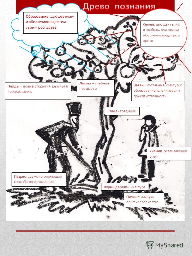 Плоды – новые открытия, результат исследования. Листья – учебные предметы Ствол - традиции Педагог, демонстрирующий способы возделывания. Почва – социум, опыт человечества Корни дерева - культура Ученик, осваивающий опыт Ветви – составные культуры: о