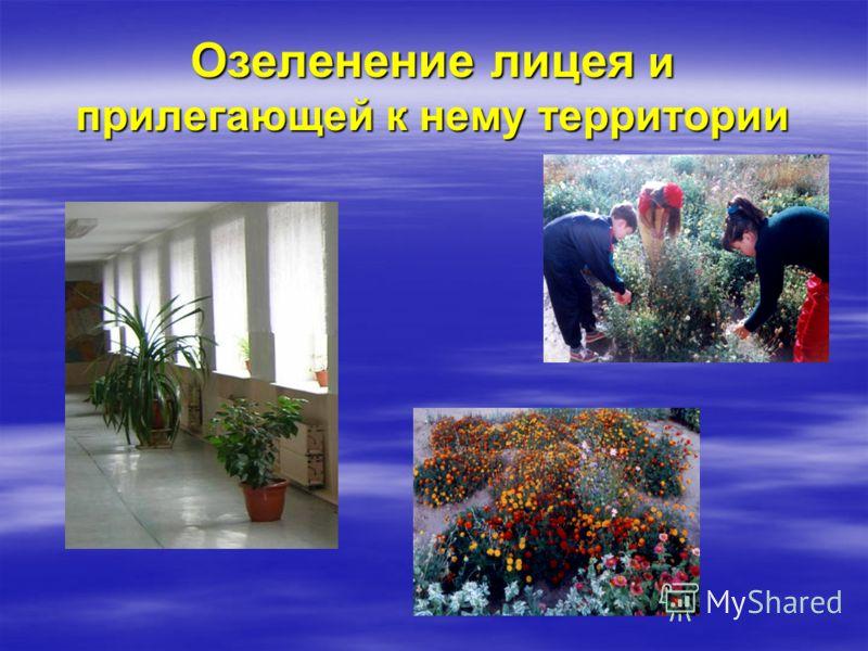 Озеленение лицея и прилегающей к нему территории