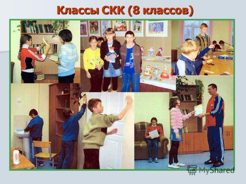 Классы СКК (8 классов)