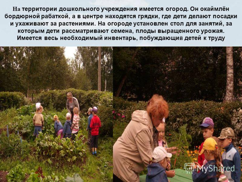 На территории дошкольного учреждения имеется огород. Он окаймлён бордюрной рабаткой, а в центре находятся грядки, где дети делают посадки и ухаживают за растениями. На огороде установлен стол для занятий, за которым дети рассматривают семена, плоды в