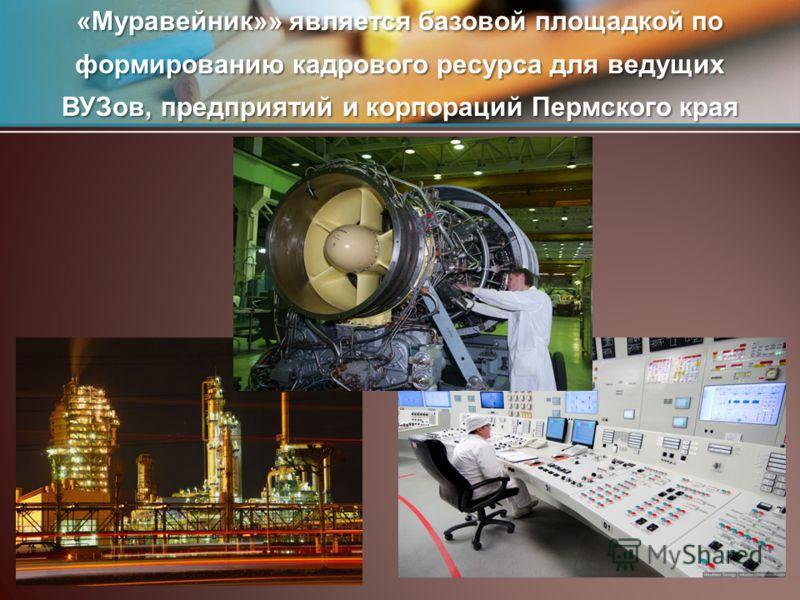 «Муравейник»» является базовой площадкой по формированию кадрового ресурса для ведущих ВУЗов, предприятий и корпораций Пермского края