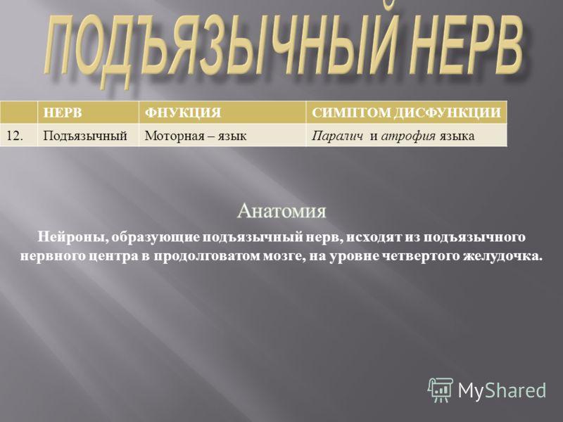 НЕРВФНУКЦИЯ СИМПТОМ ДИСФУНКЦИИ 12. Подъязычный Моторная – языкПаралич и атрофия языка