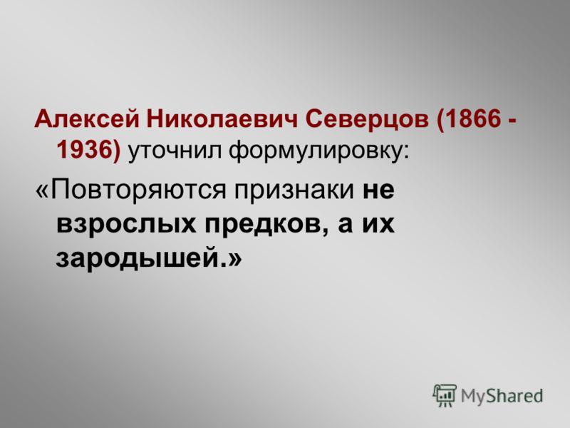 Алексей Николаевич Северцов (1866 - 1936) уточнил формулировку: «Повторяются признаки не взрослых предков, а их зародышей.»