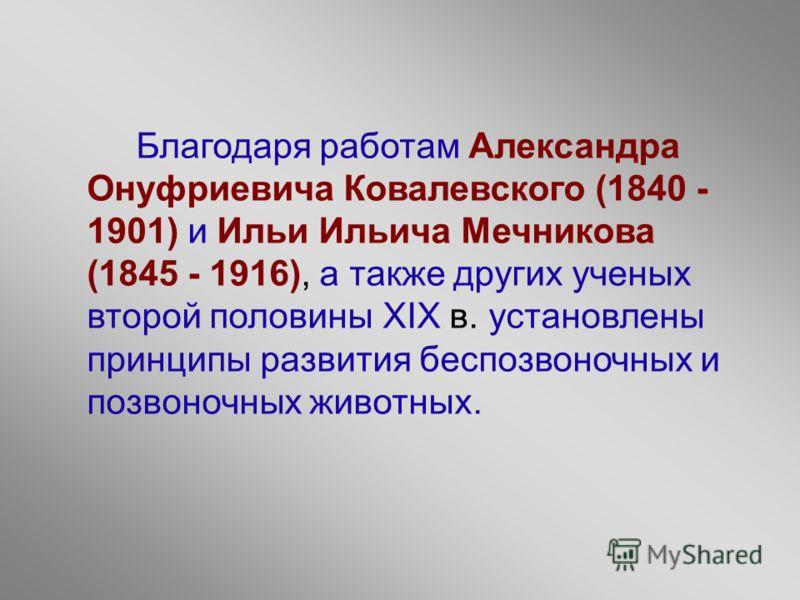 Благодаря работам Александра Онуфриевича Ковалевского (1840 - 1901) и Ильи Ильича Мечникова (1845 - 1916), а также других ученых второй половины ХIХ в. установлены принципы развития беспозвоночных и позвоночных животных.