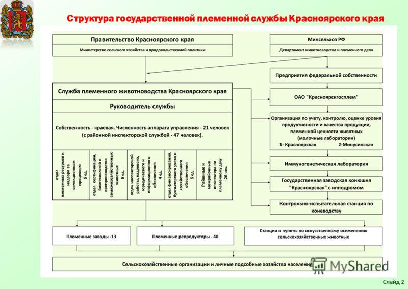 Структура государственной племенной службы Красноярского края Слайд 2