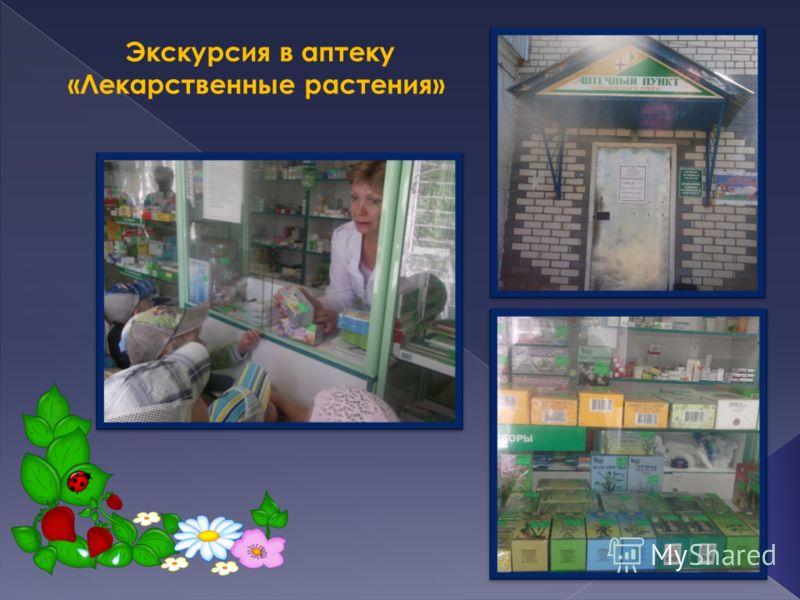 Экскурсия в аптеку «Лекарственные растения»