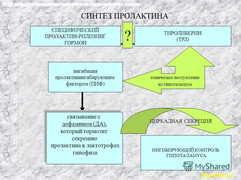 СИНТЕЗ ПРОЛАКТИНА СПЕЦИФИЧЕСКИЙ ПРОЛАКТИН-РИЛИЗИНГ ГОРМОН ТИРОЛИБЕРИН (ТРЛ) ? тоническое поступление из гипоталамуса ингибиция пролактинингибирующим фактором (ПИФ) связывание с дофамином (ДА), который тормозит секрецию пролактина в лактотрофах гипофи