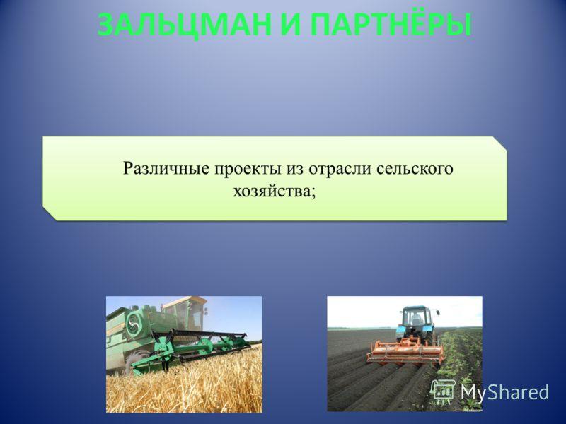 ЗАЛЬЦМАН И ПАРТНЁРЫ Различные проекты из отрасли сельского хозяйства;