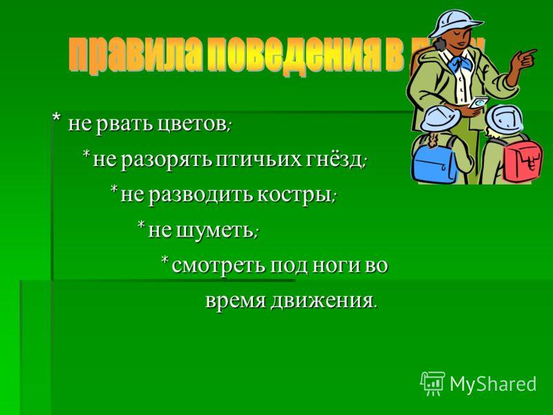 * не рвать цветов; * не разорять птичьих гнёзд; * не разводить костры; * не шуметь; * смотреть под ноги во время движения.