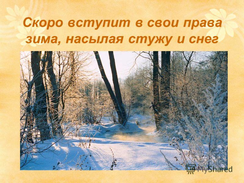 Скоро вступит в свои права зима, насылая стужу и снег