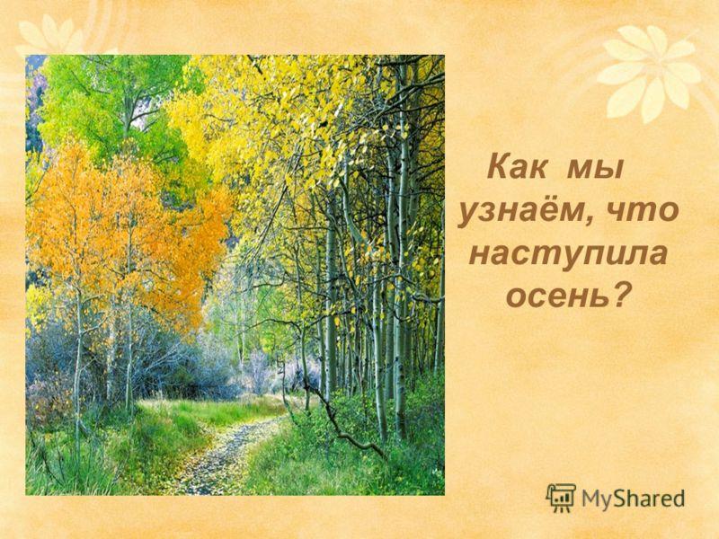 Как мы узнаём, что наступила осень?