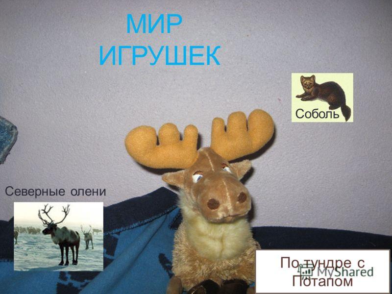 МИР ИГРУШЕК Северные олени Соболь По тундре с Потапом