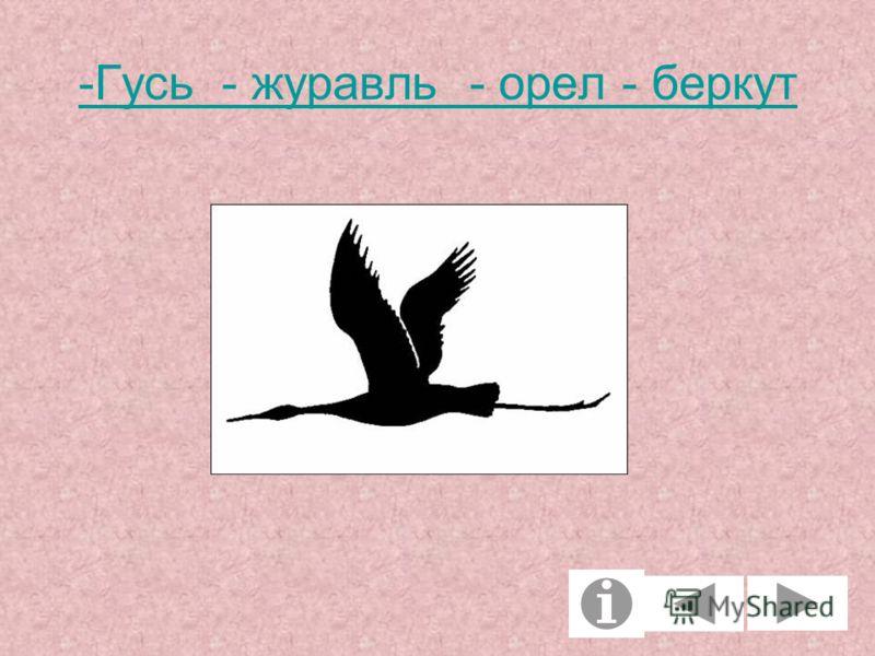 -Гусь - журавль - орел - беркут