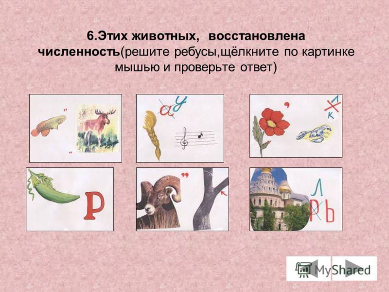 6.Этих животных, восстановлена численность(решите ребусы,щёлкните по картинке мышью и проверьте ответ)