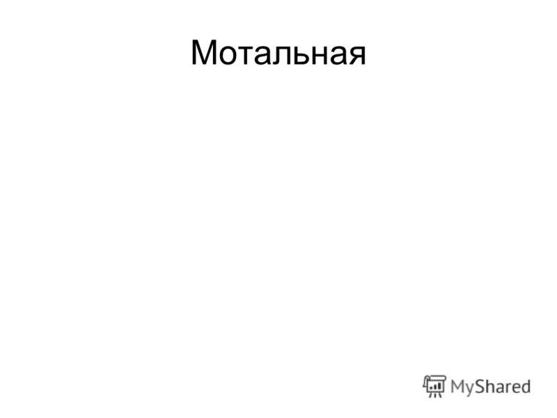 Мотальная