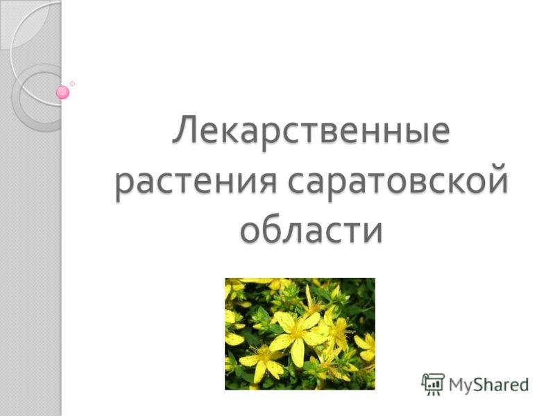 Лекарственные растения саратовской