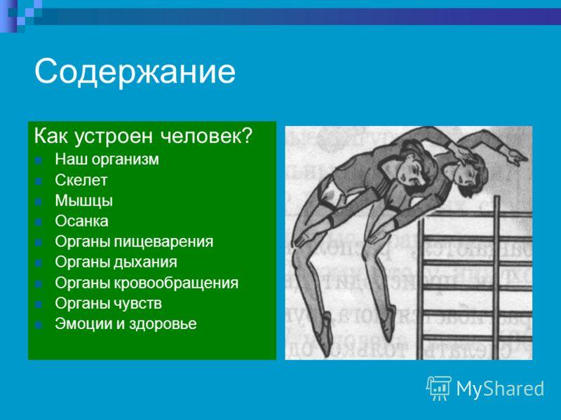 Содержание Как устроен человек? Наш организм Скелет Мышцы Осанка Органы пищеварения Органы дыхания Органы кровообращения Органы чувств Эмоции и здоровье