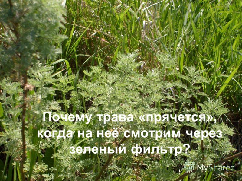 Почему трава «прячется», когда на неё смотрим через зеленый фильтр?