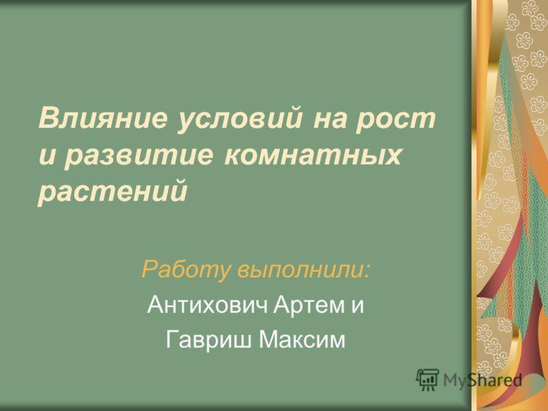 Влияние условий на рост и развитие комнатных растений Работу выполнили: Антихович Артем и Гавриш Максим