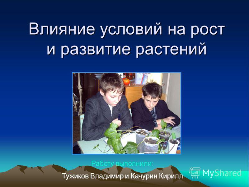 Влияние условий на рост и развитие растений Работу выполнили: Тужиков Владимир и Качурин Кирилл