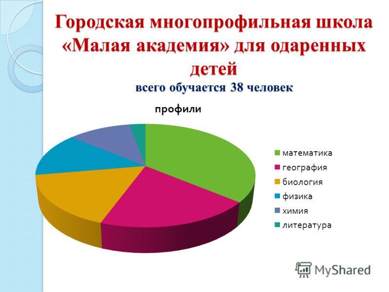 Городская многопрофильная школа «Малая академия» для одаренных детей всего обучается 38 человек